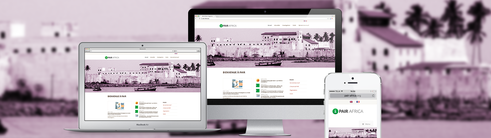 webdesign-pair-africa-website