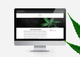 portfolio-investment-cannabis